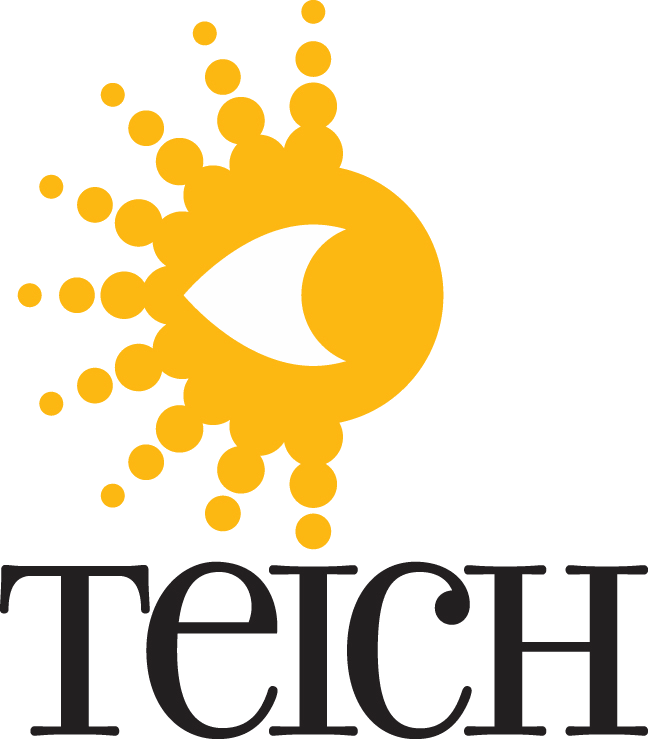 Teich Data Services